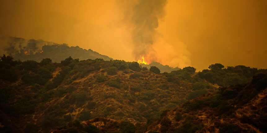 Wildfire Resilience Plan